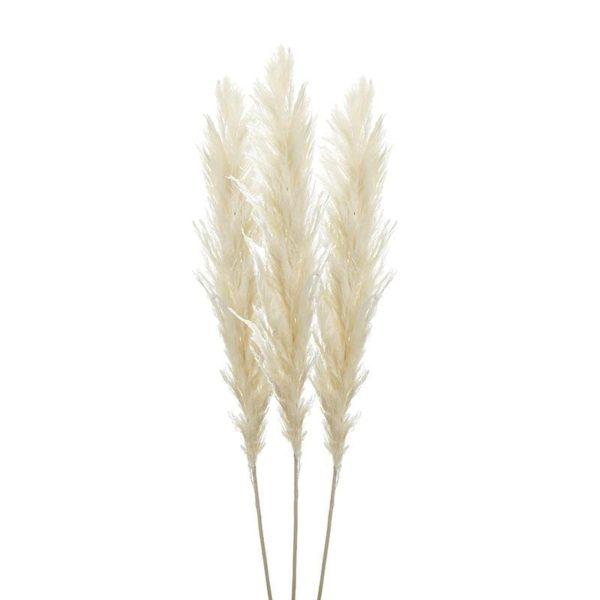 Κλαδί/Φυτό Εκρού Σετ 3 - 150 cm